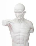 Sculpture pour l'étude d'art Image libre de droits
