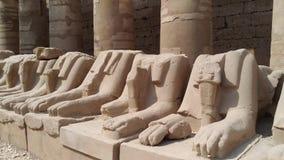 Sculpture en sphinx avec la tête d'une RAM Karnak à Louxor banque de vidéos
