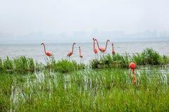 Sculpture en ville de lac suzhou Jinji --- Flamant Photographie stock