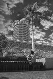 Sculpture et gratte-ciel de Townsville Photographie stock libre de droits