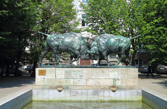 Sculpture Fighting bisons, a monument of art in Kaliningrad. KALININGRAD, RUSSIA — JULY 7, 2014: Sculpture Fighting bisons, a monument of art in Kaliningrad Royalty Free Stock Images