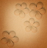 Sculpture frangipani. On the cement background Royalty Free Stock Photo