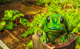 Sculpture of frog Royalty Free Stock Images