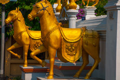 Sculpture of the Golden horse. Thailand Temple. Chiangmai. Sculpture of the Golden horse in a Buddhist temple. Chiangmai. Thailand royalty free stock photo