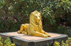 Sculpture of golden lion Royalty Free Stock Photography