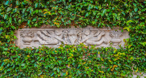The sculpture in the green leaf frame Royalty Free Stock Photos
