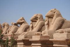 Sculpture from Karnak Temple Royalty Free Stock Photos