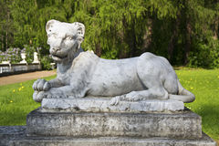 Sculpture of a lion Royalty Free Stock Images