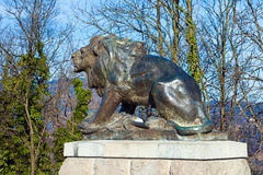 Sculpture of lion on Castle Hill in Graz Royalty Free Stock Images