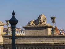 Sculpture of a lion on a chain bridge Stock Images