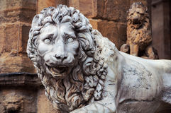 Sculpture of Lion located in Florence Royalty Free Stock Images