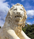 Sculpture lion Royalty Free Stock Photo