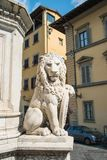 Sculpture of a lion near the Basilica of Santa Croce Basilica o royalty free stock photo