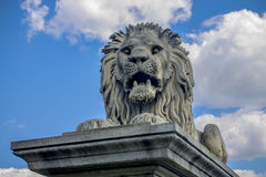 Sculpture of a lion near the Parliament building in Budapest Stock Images