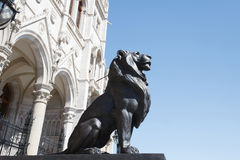 Sculpture of a lion near the Parliament building in Budapest. Stock Photos