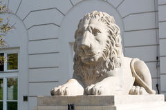 Sculpture of a lion near the Royal Palace in Warsaw, Poland Stock Photo