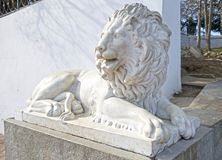 Sculpture of a lion Stock Image