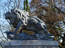 A sculpture of a lion on the Slossberg hill in Graz Stock Image