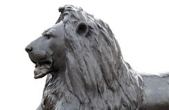 Sculpture of a lion in Trafalgar Square Royalty Free Stock Images