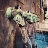 Sculpture in Malaga. Water dogs in the center of the city stock photos