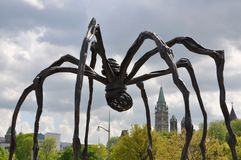 Sculpture Maman and Parliament in Ottawa Royalty Free Stock Images