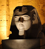 Sculpture in the night, cut. Luxor Tepmle in the night, Egypt Royalty Free Stock Photos