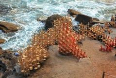 Sculpture par l'objet exposé de mer chez Bondi, Australie Photo libre de droits
