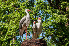 Sculpture park storks Royalty Free Stock Photography