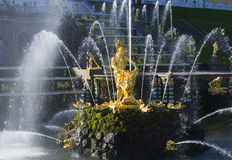 The sculpture Samson tearing the lion's mouth in the jets of water. A fragment of the Grand cascade in Peterhof Royalty Free Stock Photo