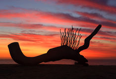 Sculpture by the Sea - Currawong silhouetted against sunrise sky Stock Photos