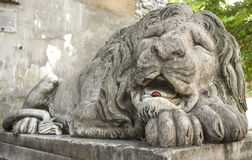 Sculpture of sleeping lion Stock Photography