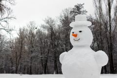 Cheerful snowman in a hat. Sculpture of snow. Strange and terrifying snowman. Playing outdoors in winter. Family winter fun in the forest. Smile and nose of a stock images