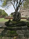 Sculpture, Statue, Tree, Monument stock photos