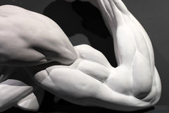 Sculpture of strong muscular arm Royalty Free Stock Image