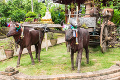 Sculpture of two bulls with cart Royalty Free Stock Photography