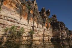 Sculptured Devonian limestone cliffs of Geikie Gorge Stock Images
