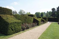 Sculptured hedge and a gravel path at Hever castle garden in England Stock Photo