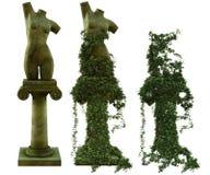 Sculptures de torse femelle illustration libre de droits