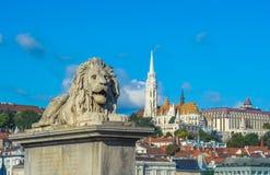 Sculptures en lion du pont à chaînes avec la vue de Budapest Image libre de droits