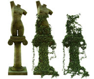 Sculptures of female torso  Royalty Free Stock Photography