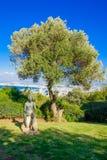 Sculptures Garden, Haifa Stock Photography