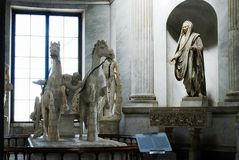 Sculptures of horses in Vatican museum Stock Photos