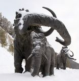 Sculptures of mammoths in Archeopark, Khanty - Mansiysk, Russia Located at the foot of glacial hill, Archeopark shows lifelike sta. Khanty - Mansiysk,Russia Royalty Free Stock Photography