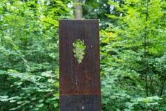 Sculptures rouillées en fleur en métal dans la forêt Photos libres de droits