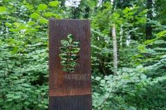 Sculptures rouillées en fleur en métal dans la forêt Images libres de droits
