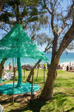 Sculptures by the Sea 2016: Woven Tree Stock Image
