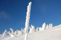 Sculptures sur neige images libres de droits