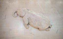 Sculpure: De huid spreekt een zijn taal niet  Royalty-vrije Stock Afbeelding