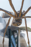 Scultura bronzea e museo Guggenheim a Bilbao Immagine Stock Libera da Diritti