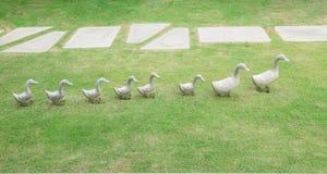 Scultura ceramica della decorazione delle anatre su erba verde Fotografia Stock